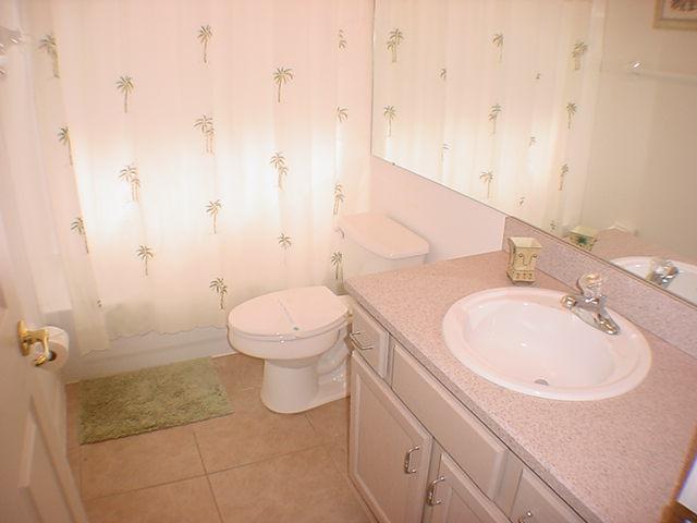 2602 Oneida Loop - Guest Bath 1